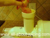 feeding sorbet into juice
