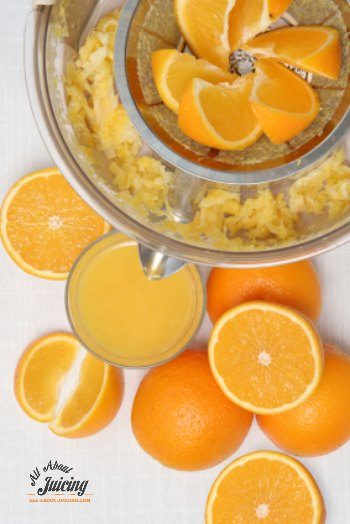 juicer pulp uses and ideas