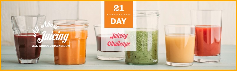 Best quality home juicer juicer made such way