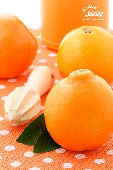 Citrus juice recipes