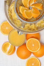 orange juicer pulp and recipes