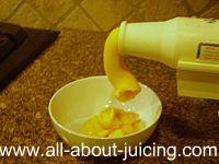 sorbert from juice