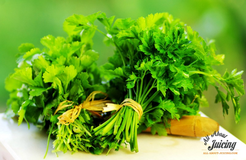 detox by juicing parsley and cilantro