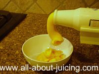 Hurom Slow Juicer Banana Ice Cream : Sorbet recipes How to make sorbert with your juicer or vitamix